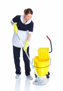 DIY VS Professional Agencies For Deep Cleaning